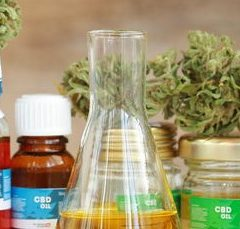 CBD for Seniors: 10 Ways it Can Help