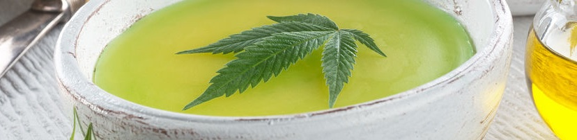 Differences Between CBD Oil and Hemp Oil
