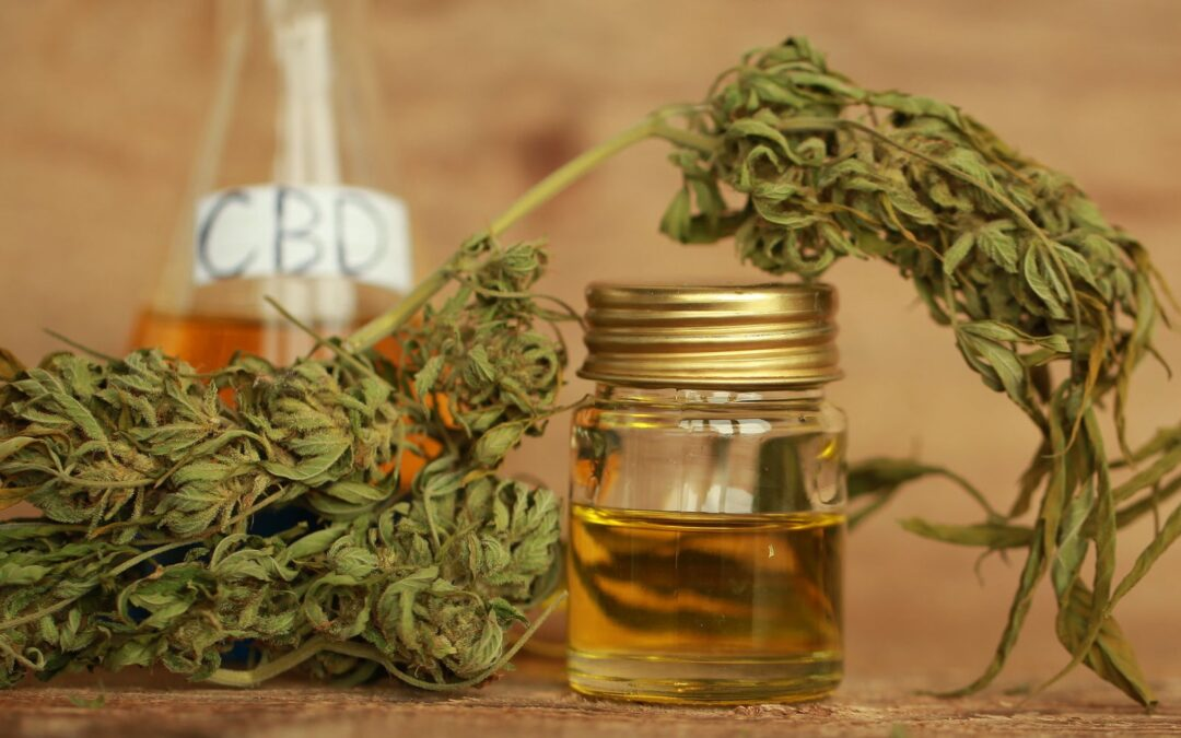 3 Mistakes to Avoid When Using CBD Oil for the First Time