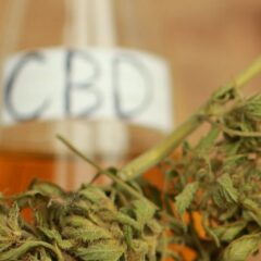 The Growing Trend in Using CBD Products