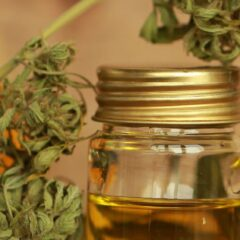 Hidden Tricks to Choosing the Right CBD Products