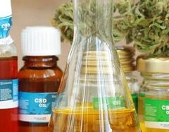 How to Choose an Online CBD Store